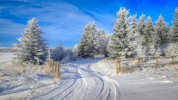 обоя природа, зима, простор