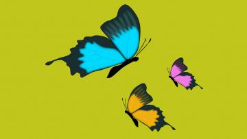 обоя векторная графика, животные , animals, фон, бабочки