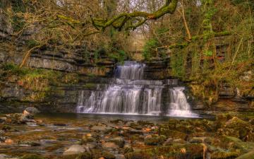 обоя природа, водопады, англия, cotter, force, камни, ветки, hdr, лес, деревья, мох, cumbria, cotterdale, водопал, кусты, осень