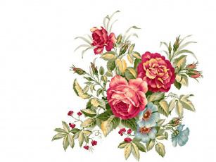 Картинка рисованные цветы