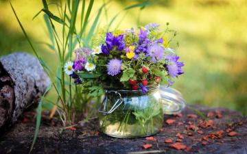 обоя цветы, букеты,  композиции, древесная, кора, земляника, полевые, трава