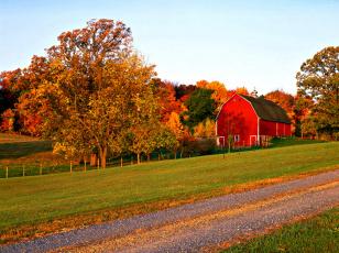 обоя природа, дороги, дом, шоссе, осень