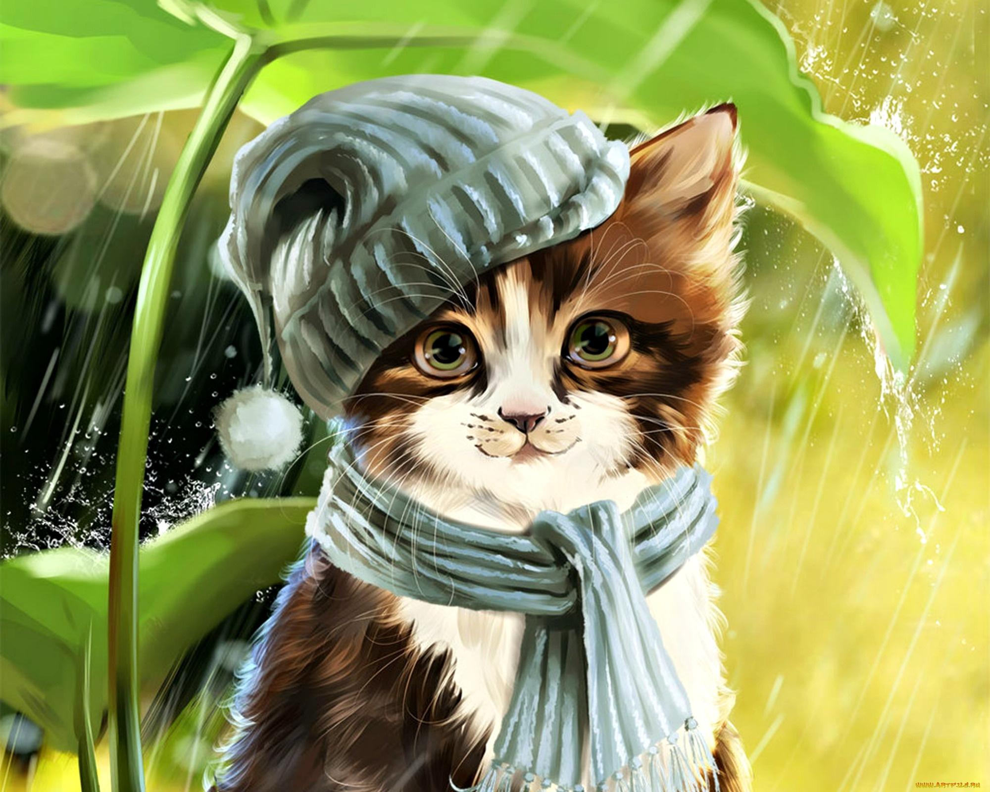 классные красивые рисунки животных ходят школу