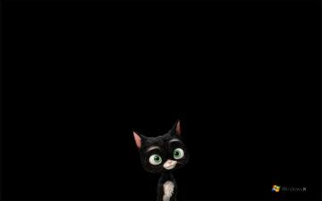 обоя компьютеры, windows 8, черный, котенок