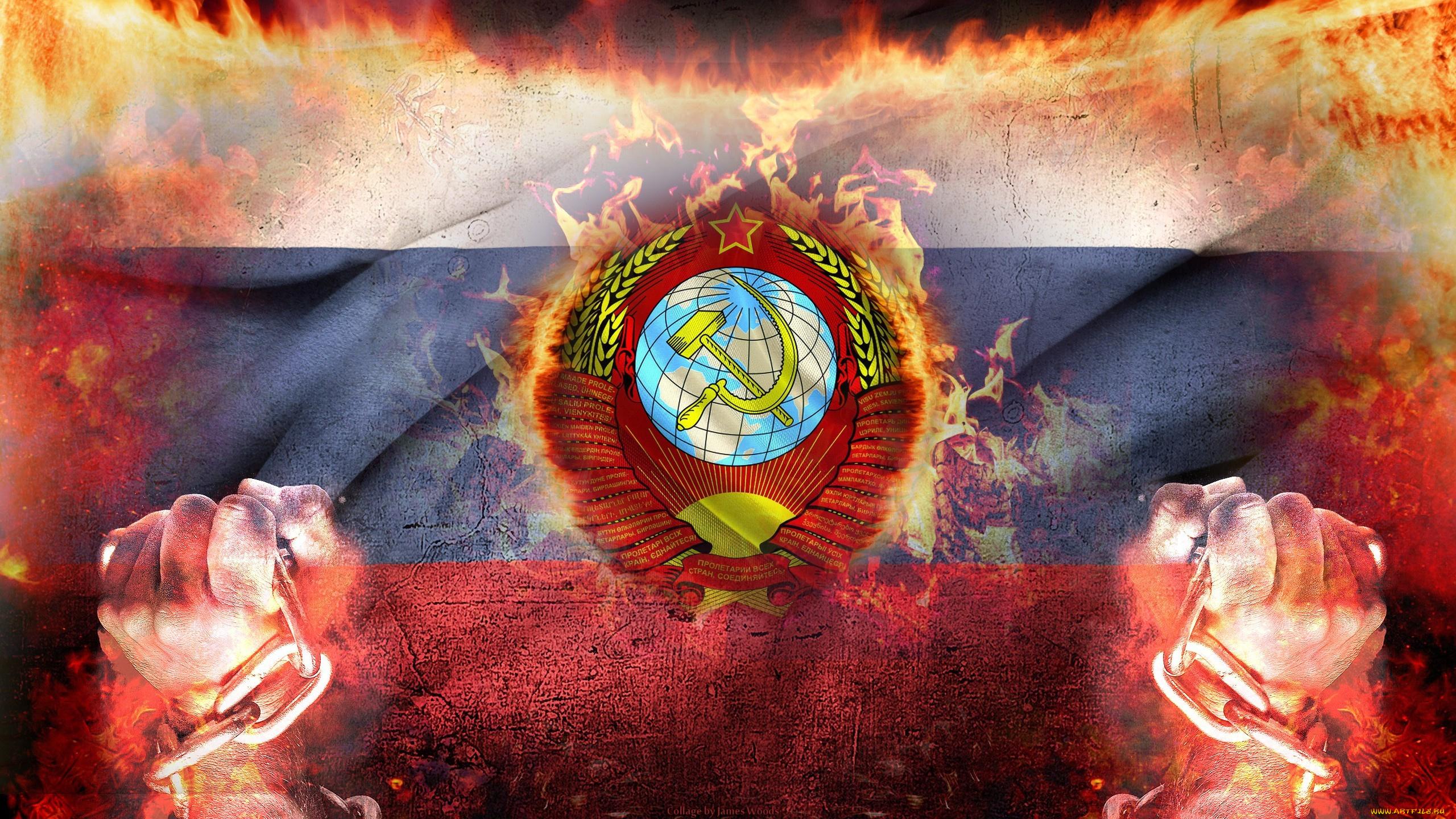 обои на рабочий стол русский медведь на фоне флага № 174758 бесплатно