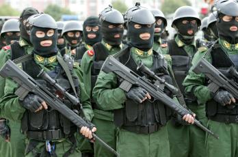 Картинка оружие армия спецназ винтовки