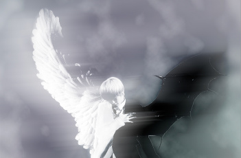 Картинка as white black you angel demon музыка teen top ангелы крылья демоны korean boys