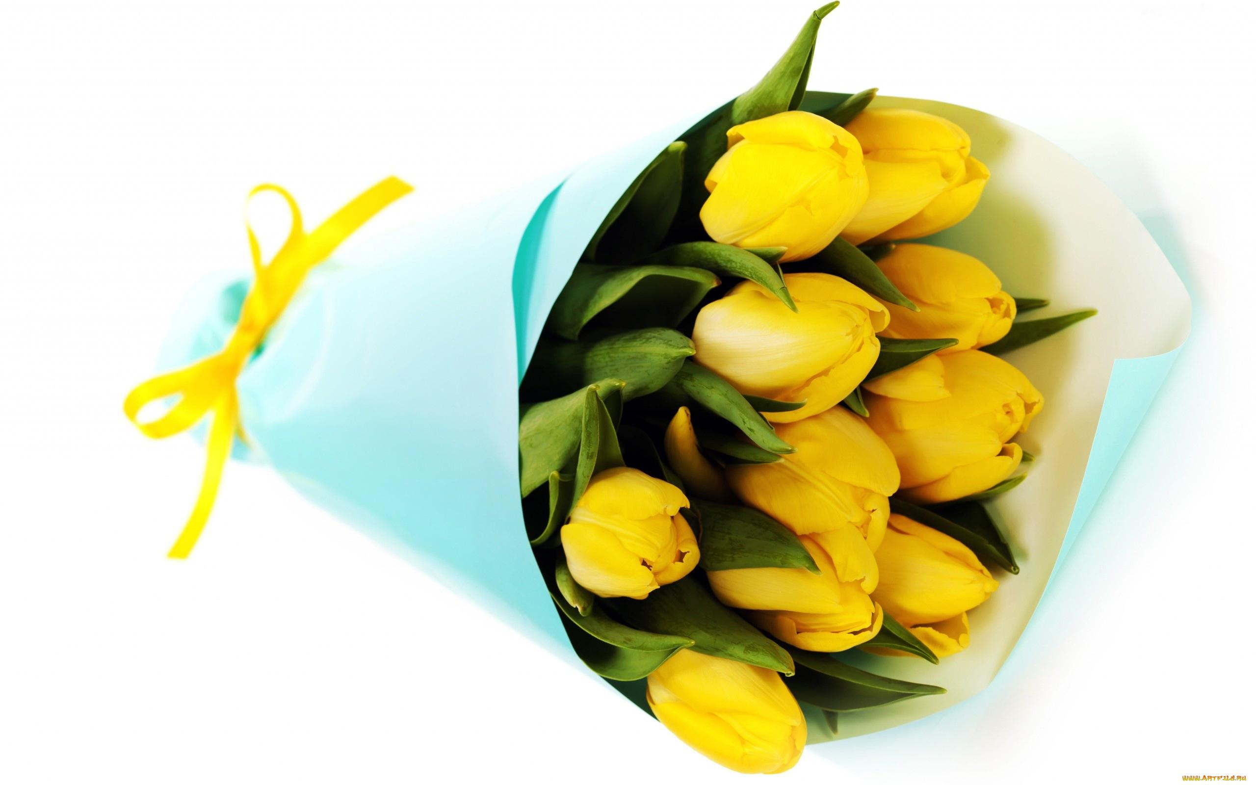 Добрым утром, открытки с днем рождения с желтыми тюльпанами