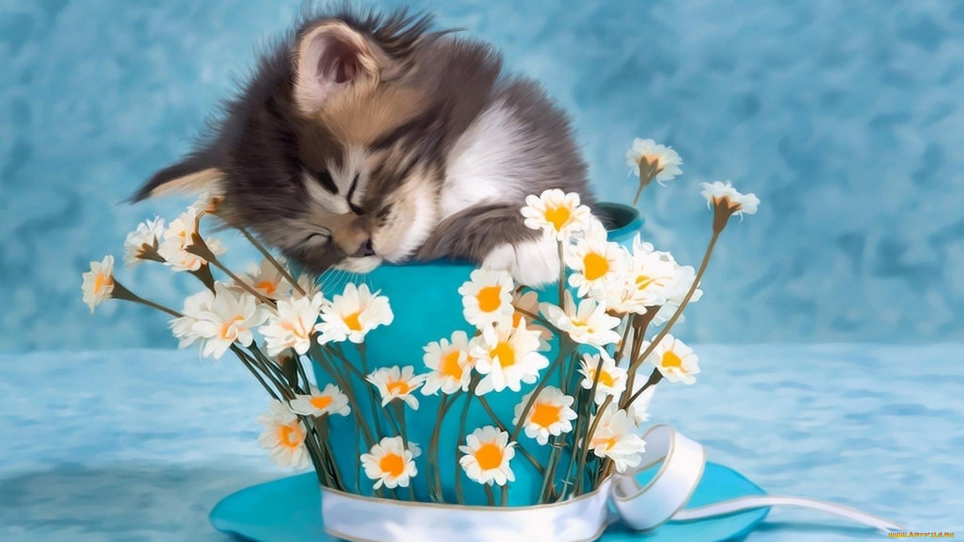 Красивые открытки с добрым утром с цветами и животными