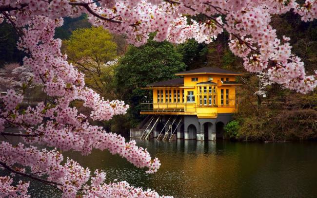 Япония картинки на рабочий стол