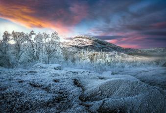 обоя природа, зима, иней, деревья, горы