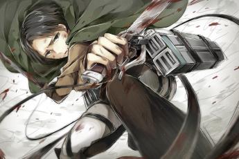 Картинка аниме shingeki+no+kyojin атака титанов