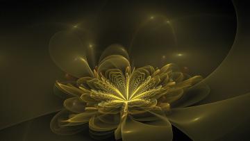 обоя 3д графика, фракталы , fractal, узор, цвета, фон