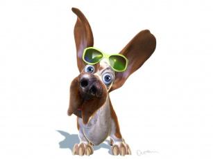 Картинка рисованные животные собаки очки
