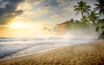 обоя природа, побережье, summer, beach, пальмы, море, shore, sea, песок, sand, palms, берег, paradise, tropical, пляж