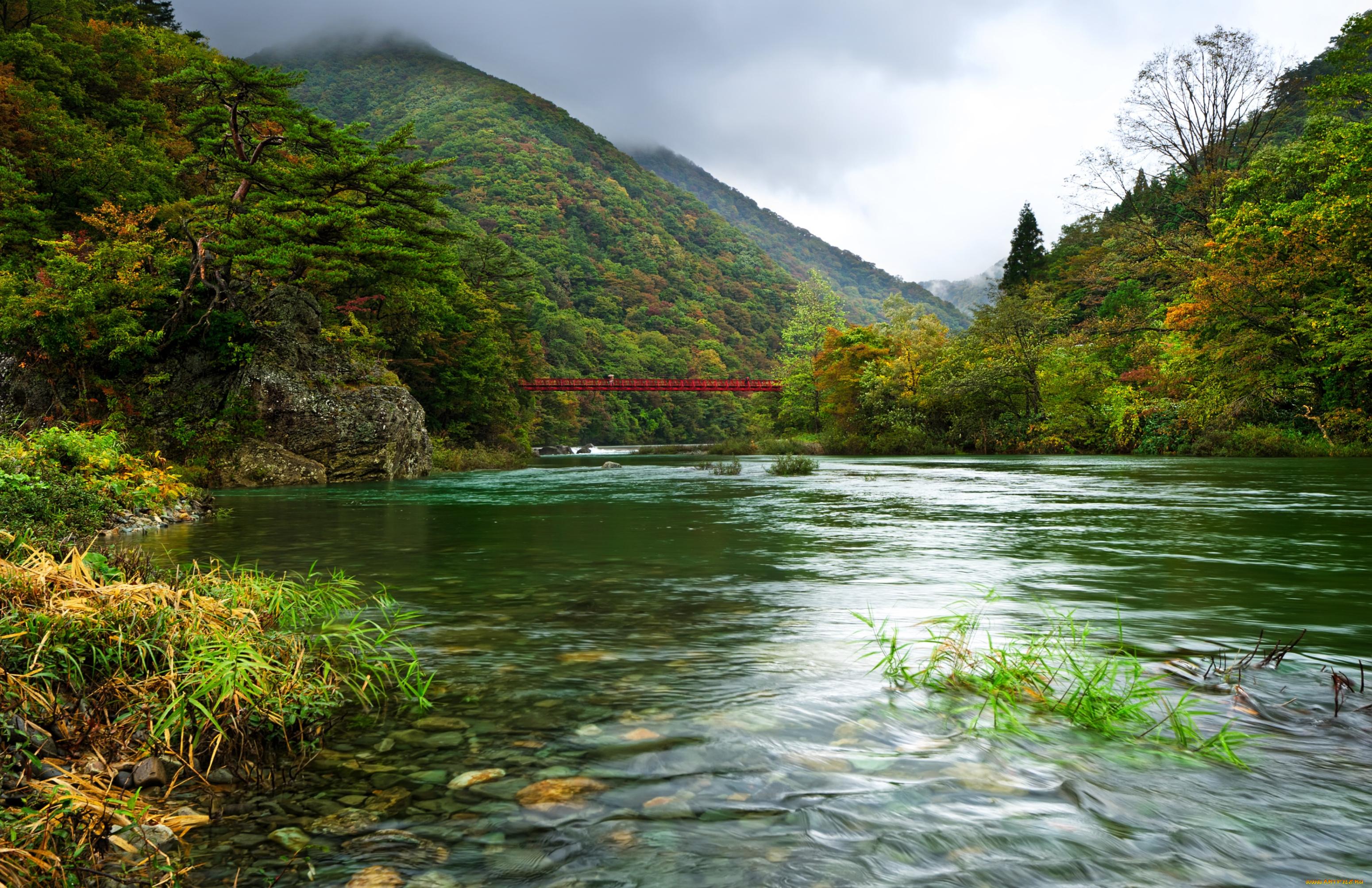 Озерцо мостик лес горы  № 2950082 бесплатно