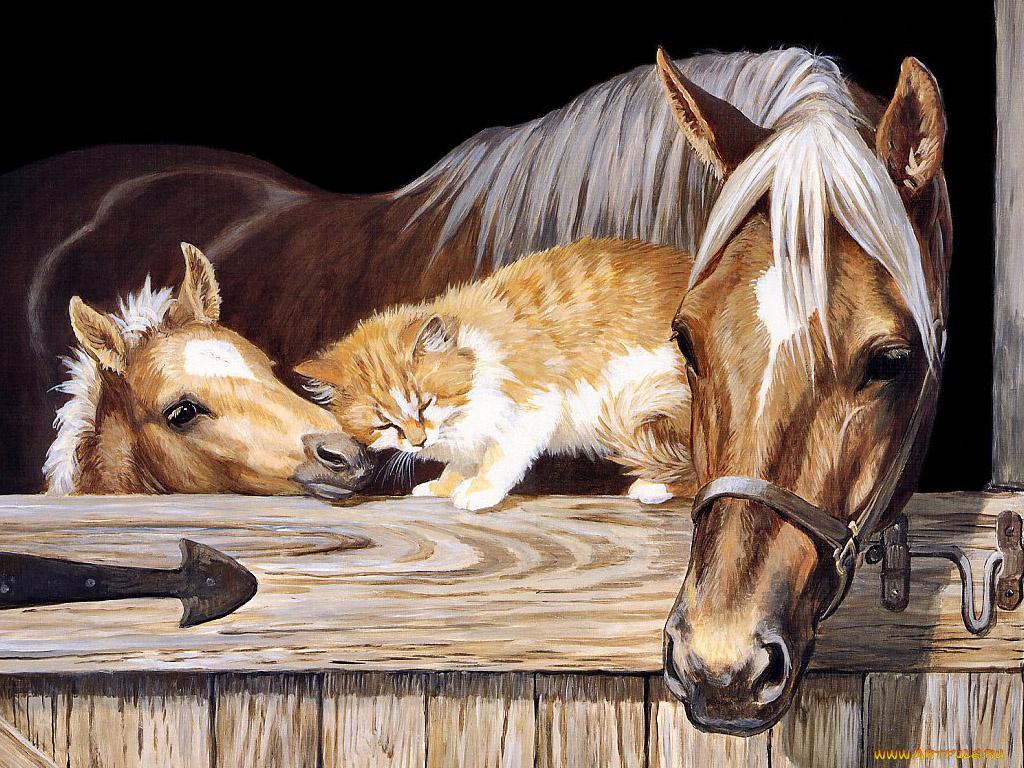 Надписью, красивые анимационные открытки с животными