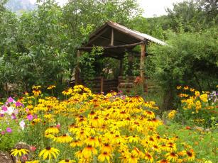 Картинка разное сооружения постройки сарай цветы
