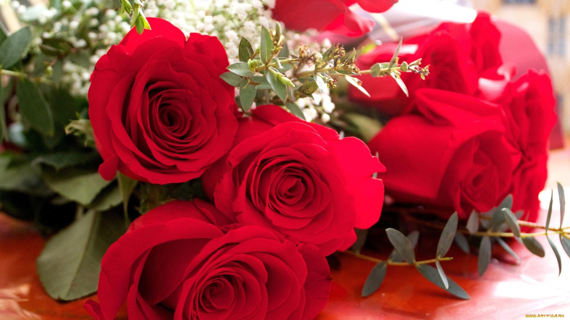 Открытка розы девушке, цветам подписью