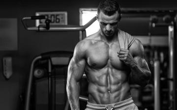 Картинка мужчины -+unsort мужчина бодибилдинг мускулы торс чёро-белое