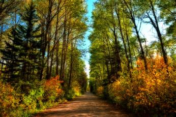 обоя природа, дороги, простор