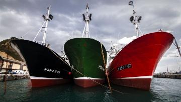 Картинка корабли грузовые+суда трио