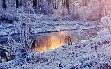 Картинка природа зима иней река деревья
