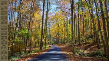 обоя календари, природа, 2018, дорога, деревья, осень