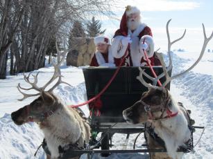 Картинка праздничные дед мороз олени повозка снег санта
