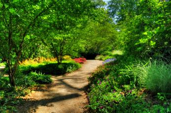 Картинка природа дороги тропинка парк