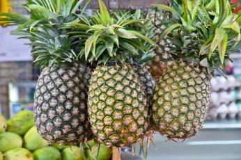 обоя еда, ананас, плоды