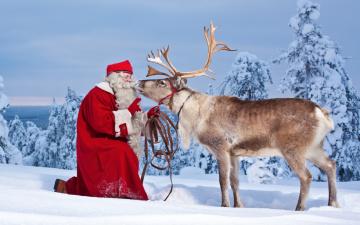 обоя праздничные, дед мороз,  санта клаус, снег, санта, олень