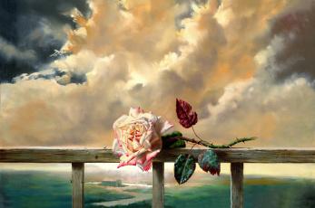 обоя рисованное, цветы, роза, перила, лежит, тучи, небо, река, вид, пейзаж