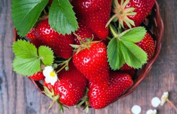 обоя еда, киви, клубника, ягоды