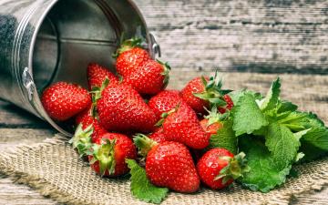 обоя еда, клубника,  земляника, ягоды, мята