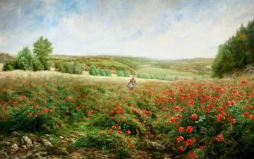 обоя рисованное, живопись, девушка, поле, вид, маки, цветы, долина, холмы, картина