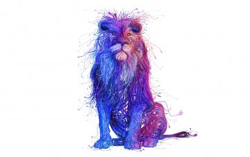 обоя рисованное, минимализм, стиль, лев, краски