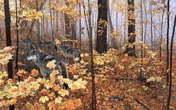 обоя рисованное, животные, волки, стая, лес, осень, листва, хищники