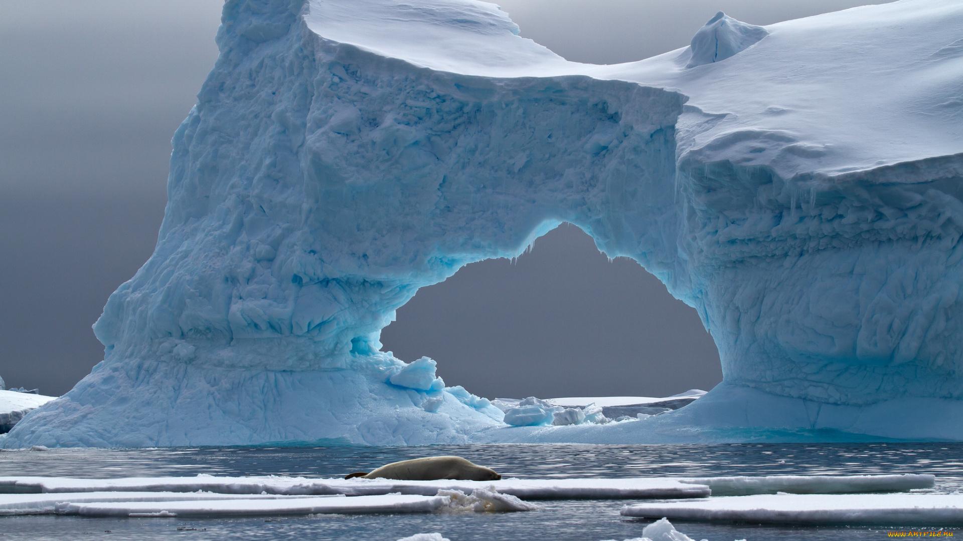 Айсберг лед море подборки