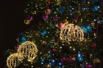 Картинка праздничные Ёлки ель гирлянды шары новый год ёлка