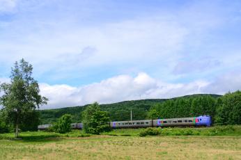обоя техника, поезда, лес, поезд