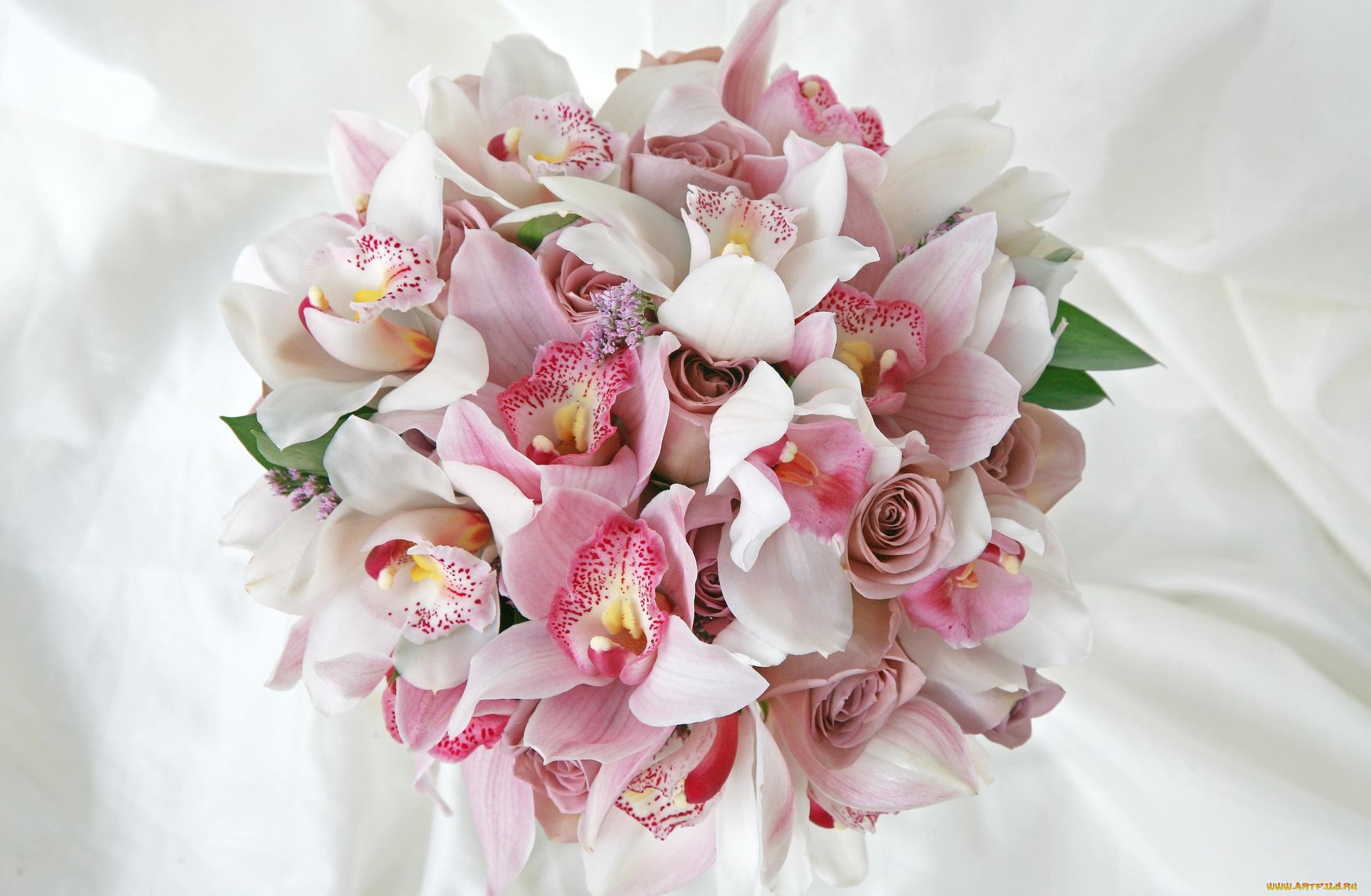 Фото открытка с орхидеями, тебе любовью анимация