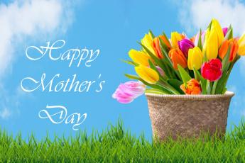 обоя праздничные, день матери, тюльпаны, пожелание, корзинка, надпись