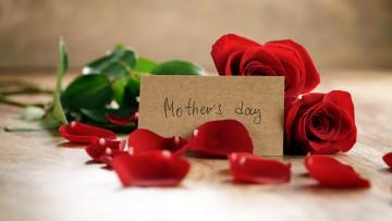 обоя праздничные, день матери, лепестки, розы, надпись