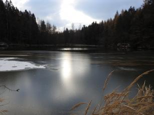 Картинка природа реки озера вода лес зима