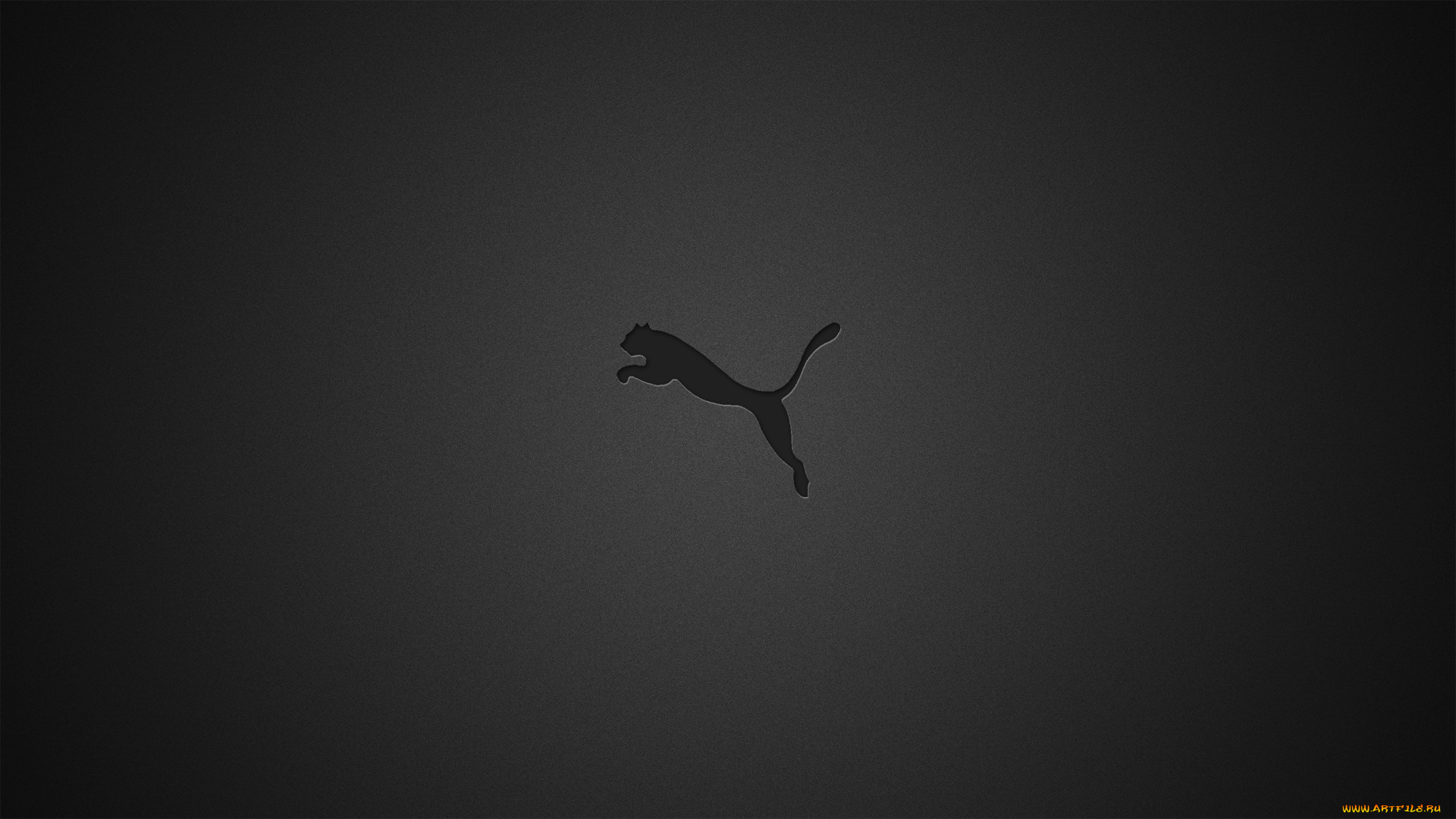 puma wallpaper iphone - HD 1920×1080