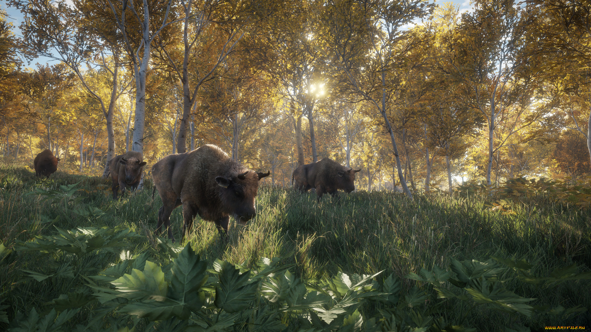 The hunter call of the wild download ita
