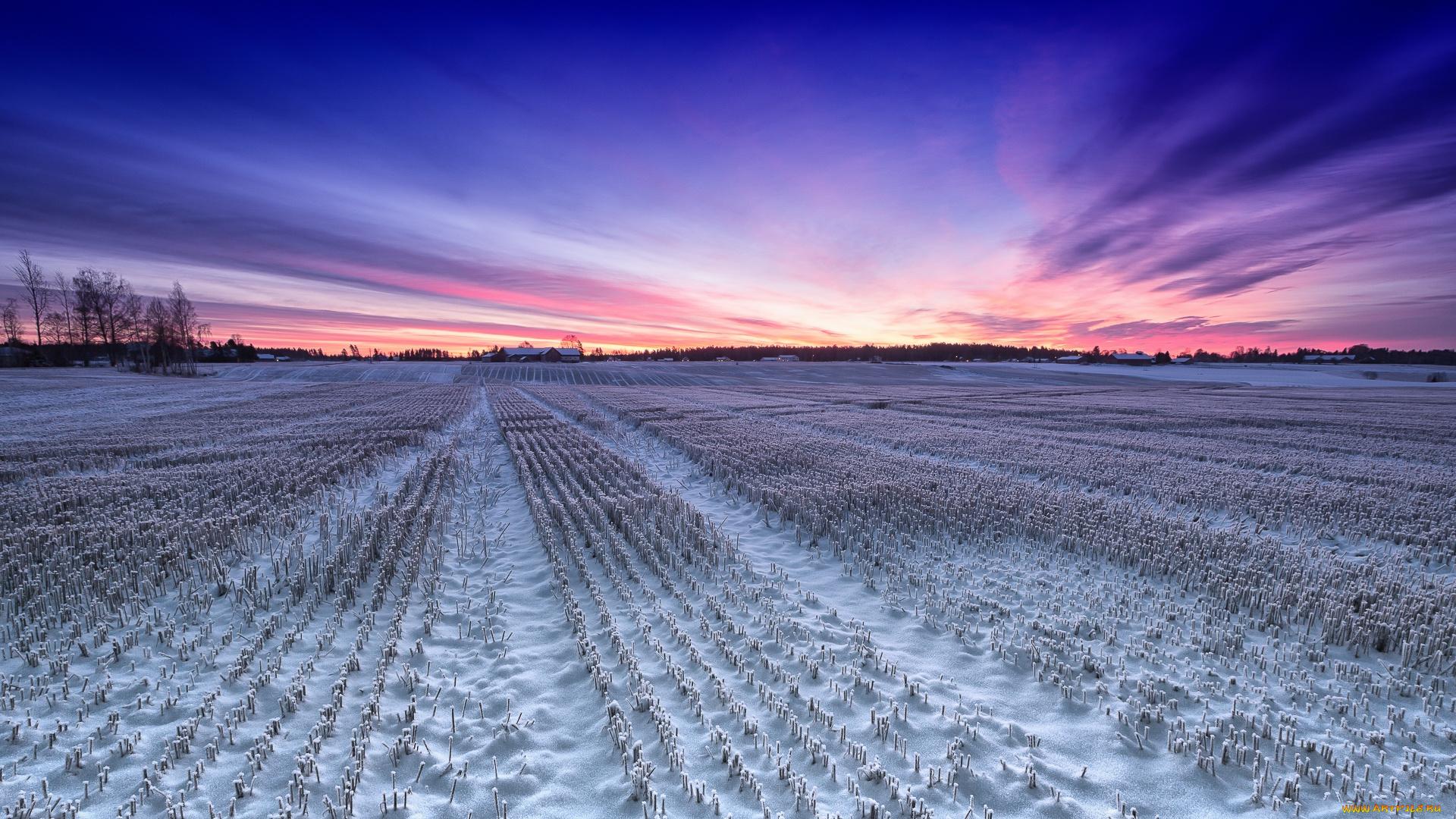поля зимой фотографии менее, кожаные плиссе