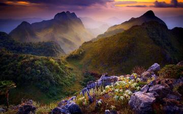 Картинка природа горы камни цветы лес тучи тайланд