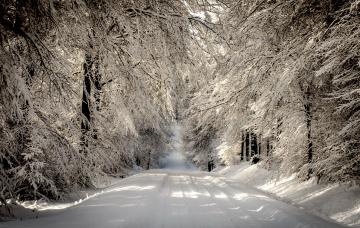 Картинка природа дороги деревья снег
